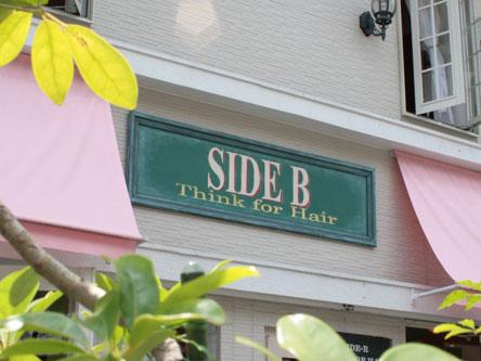 side b3