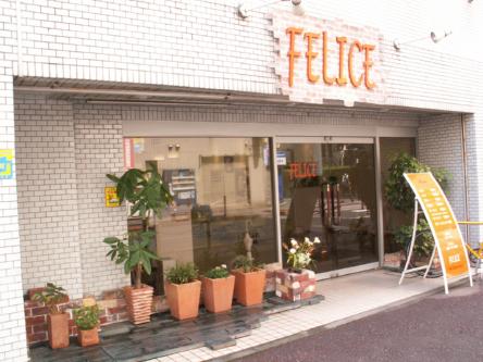 FELICE 2