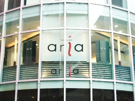 hair make aria3