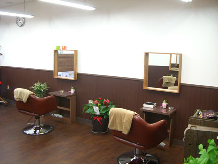 sastre hair design1