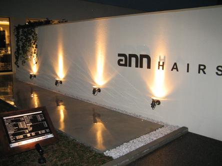 ann HAIRS3