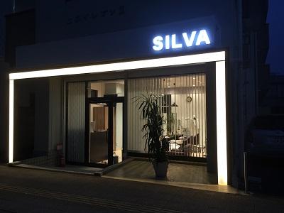 Hair&Make SILVA3