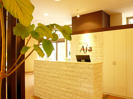 hair make Aja5