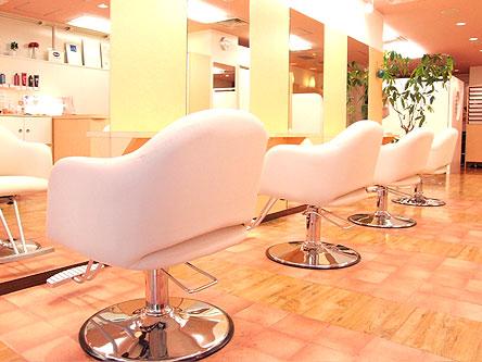 anima hair club1