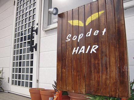 SoPdet HAIR1