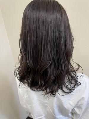 ナチュラルブラウン/暗髪カラー/ミディアム