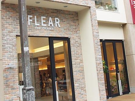 FLEAR3