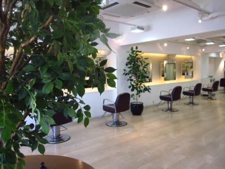 Salon・de・Joe1