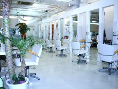 Cut Salon BEAR1