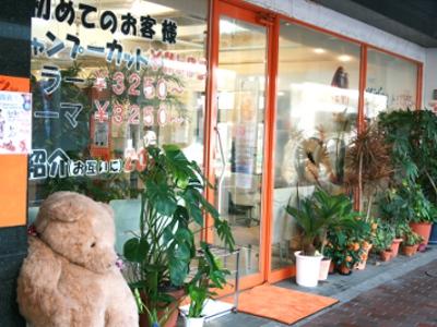Cut Salon BEAR3