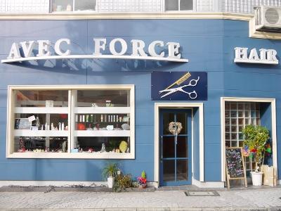 AVEC FORCE HAIR3