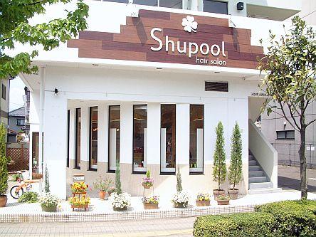 Shupool1