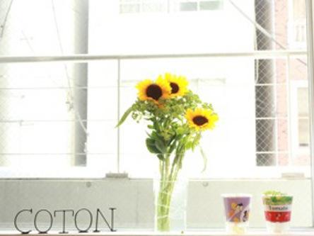 COTON5