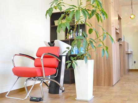 hairstyling La Cruz3