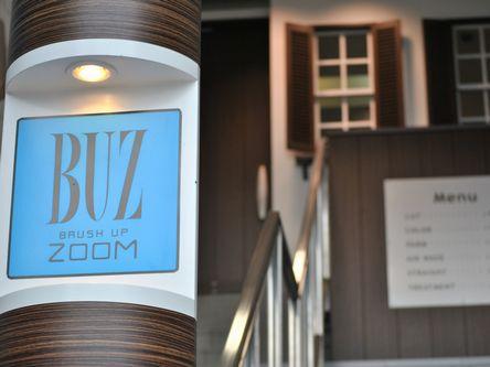 Buz Brush Up Zoom5