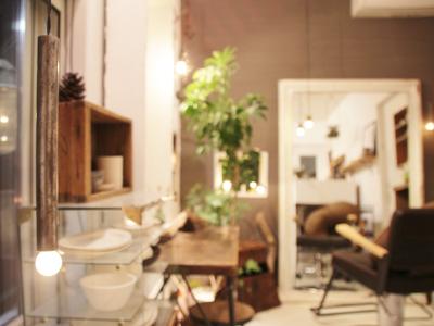sola hair gallery1