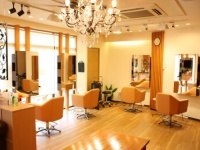 hair atelier alfred