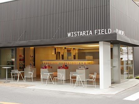 WISTARIA FIELD-PLANCHES3