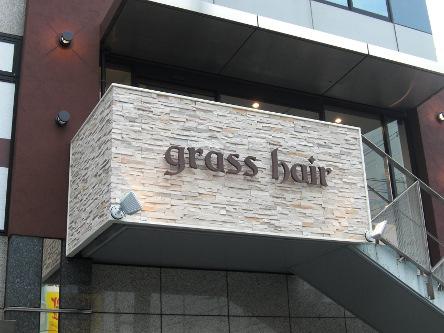 grass hair3