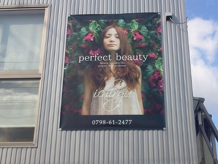 perfect beauty-ichiryu3