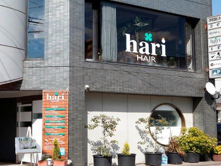 hari-HAIR4