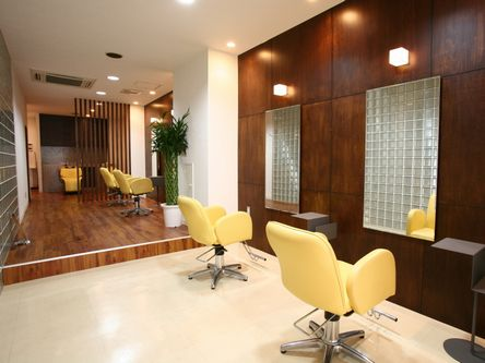 Buzz salon for hair1