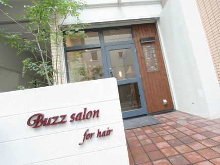 Buzz salon for hair5
