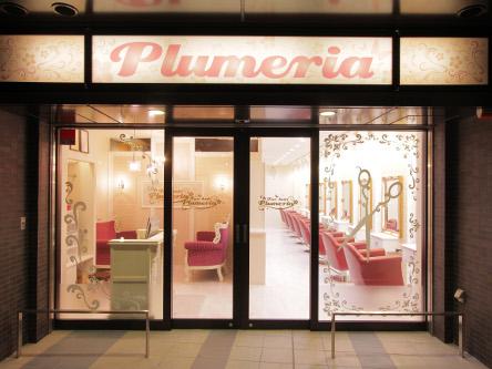Plumeria3