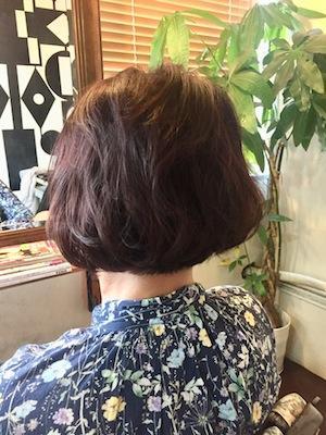 和漢カラー+くせ毛 ボブスタイル