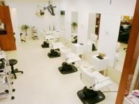 HAIR STUDIO UNITED