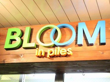 BLOOM in piles3