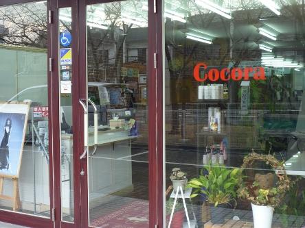 Cocora3