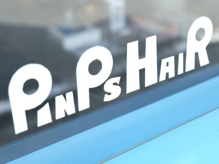 PINPS HAIR5