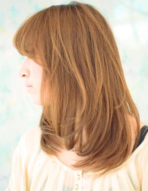美髪を導く法(no.150)
