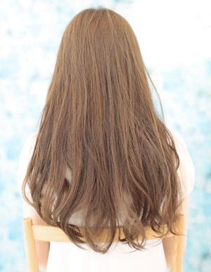 美髪黄金法則(NO.81)