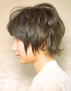 美髪人の法則(a-67)