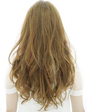 美髪人の法則(a-85)