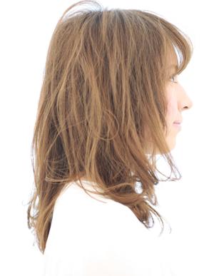 美髪人の法則(a-115)