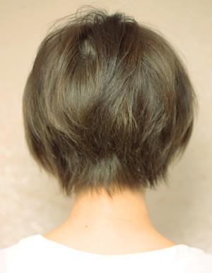 美髪人の法則(a-121)