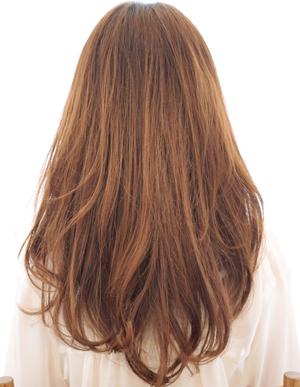 美髪人の法則(a-161)