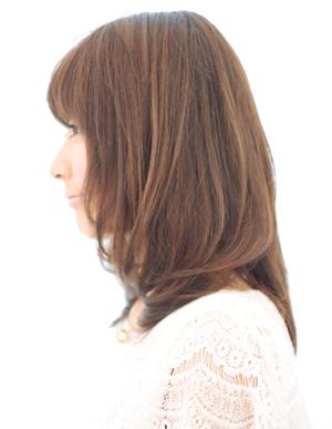 美髪の法則(c-003)