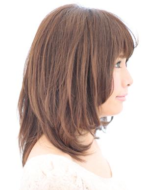 美髪の法則(c-027)