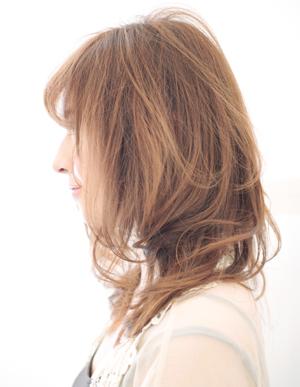 美髪の法則(c-032)