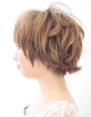 美髪の法則(c-036)