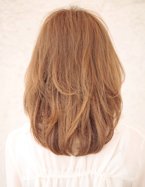 美髪の法則(c-064)