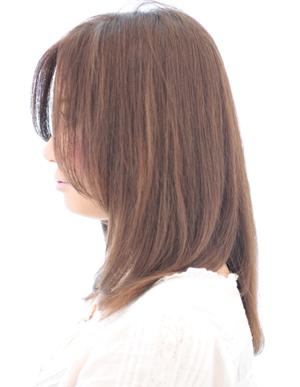 美髪の法則(c-079)