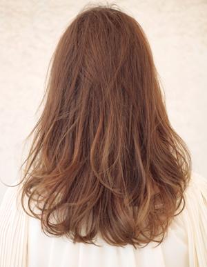 美髪の法則(c-226)