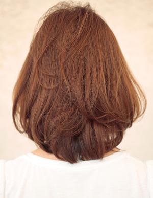 美髪の法則(c-230)