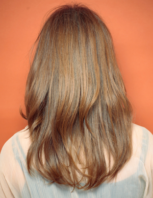 美髪の法則(c-246)