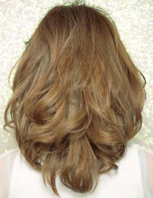 美髪へ大変身(e-040)